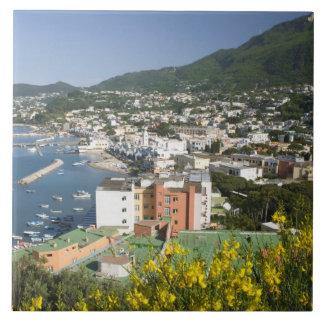 ITALY, Campania, (Bay of Naples), ISCHIA, LACCO Tile