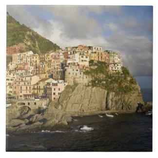 Italy, Cinque Terre, Manarola. Village on cliff. Tile