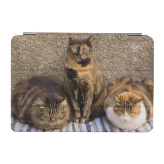 Italy, Cinque Terre, Vernazza. Three cats beside iPad Mini Cover