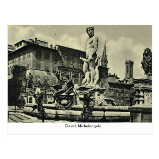 Italy, Florence, Firenze, 1908,David, Michelangelo Postcard