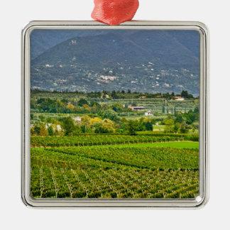 Italy, Lake Garda. The shores of Lake Garda are Silver-Colored Square Decoration