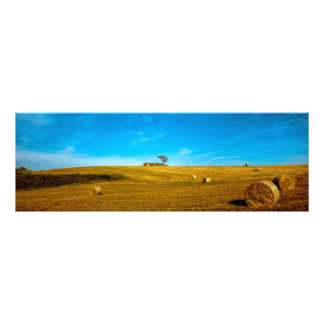 Italy landscape with tree photo print