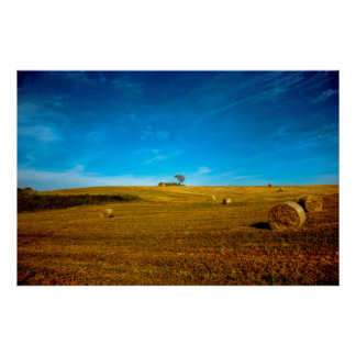 Italy landscape with tree poster
