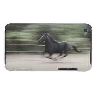 Italy, Latium, Maremma horse galloping (blurred Barely There iPod Cases