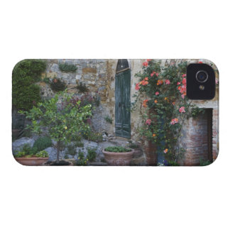 Italy, Petroio. Potted plants decorate a patio iPhone 4 Cases