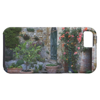 Italy, Petroio. Potted plants decorate a patio iPhone 5 Covers