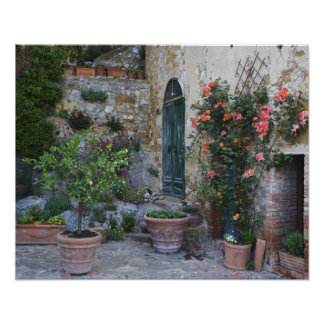 Italy, Petroio. Potted plants decorate a patio Poster