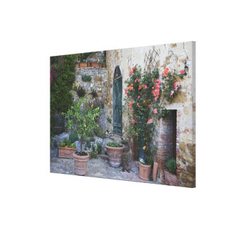 Italy, Petroio. Potted plants decorate a patio Stretched Canvas Print