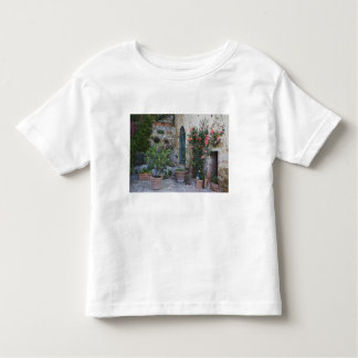 Italy, Petroio. Potted plants decorate a patio Toddler T-Shirt