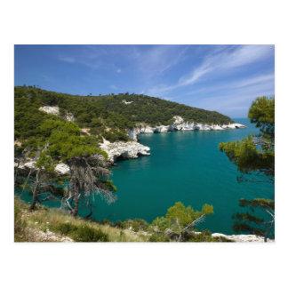 Italy, Puglia, Promontorio del Gargano, Testa Postcard