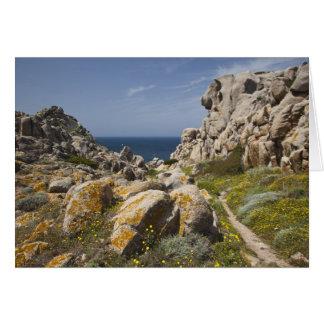 Italy, Sardinia, Santa Teresa Gallura. Capo 2 Card