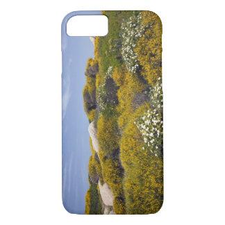 Italy, Sardinia, Santa Teresa Gallura. Capo 3 iPhone 8/7 Case