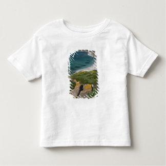 Italy, Sardinia, Tharros. View from the Spanish Toddler T-Shirt