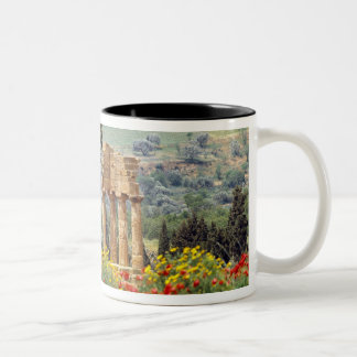 Italy, Sicily, Agrigento. The ruins of the Mug