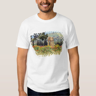 Italy, Sicily, Agrigento. The ruins of the Tshirts