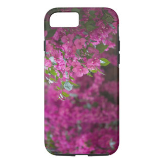 Italy, Sicily, Cefalu, Flowered Courtyard by iPhone 8/7 Case