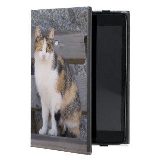 Italy, Trentino - Alto Adige, Bolzano province, 3 iPad Mini Case