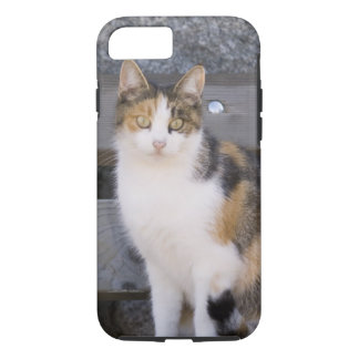 Italy, Trentino - Alto Adige, Bolzano province, 3 iPhone 8/7 Case