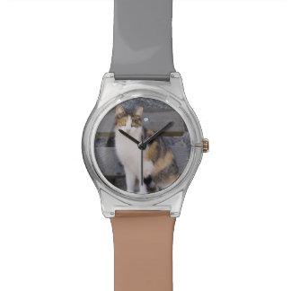 Italy, Trentino - Alto Adige, Bolzano province, 3 Wristwatch