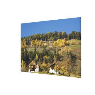 Italy, Trentino - Alto Adige, Bolzano province, 4 Canvas Print