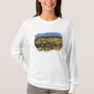 Italy, Trentino - Alto Adige, Bolzano province, 4 T-Shirt