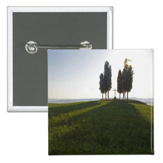 Italy, Tuscany, Cypress Trees in Tuscany with 15 Cm Square Badge