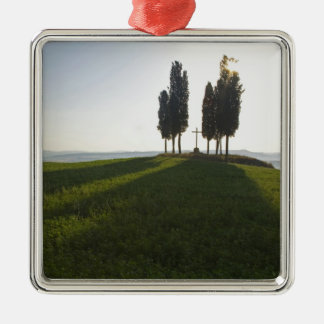 Italy, Tuscany, Cypress Trees in Tuscany with Christmas Ornament