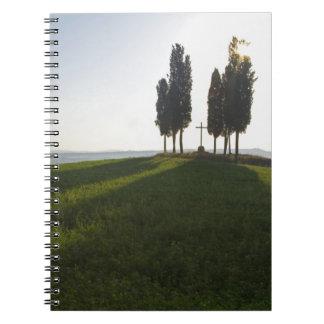 Italy, Tuscany, Cypress Trees in Tuscany with Notebook