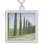Italy, Tuscany. Cypress trees line driveway to Pendants
