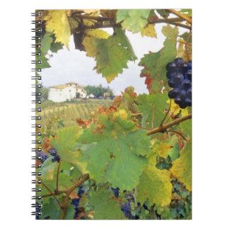 Italy, Tuscany Farmhouse viewed through Notebooks