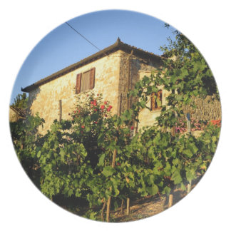 Italy, Tuscany, Greve. Late summer wine scenes Dinner Plate