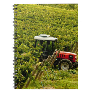 Italy, Tuscany, Greve. Pickers at work during Spiral Note Books