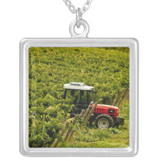 Italy, Tuscany, Greve. Pickers at work during Square Pendant Necklace