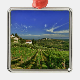 Italy, Tuscany, Greve. The vineyards of Castello Christmas Ornament