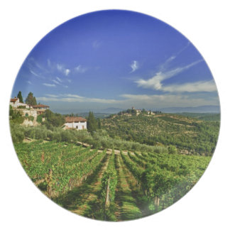 Italy, Tuscany, Greve. The vineyards of Castello Plate