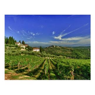 Italy, Tuscany, Greve. The vineyards of Castello Postcard