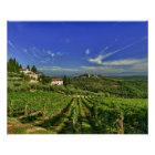Italy, Tuscany, Greve. The vineyards of Castello Poster
