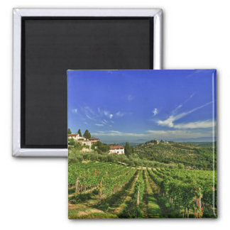 Italy, Tuscany, Greve. The vineyards of Castello Square Magnet