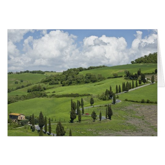 Italy, Tuscany. La Foce. A curved road winds up Card