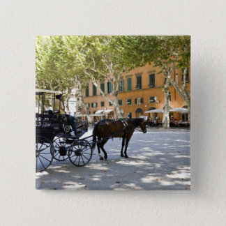 Italy, Tuscany, Lucca, Barouche on the Piazza 15 Cm Square Badge