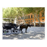Italy, Tuscany, Lucca, Barouche on the Piazza Postcard
