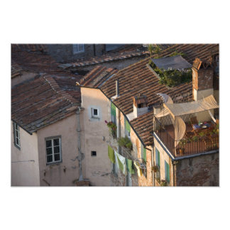 Italy, Tuscany, Lucca, View of the town and 5 Art Photo