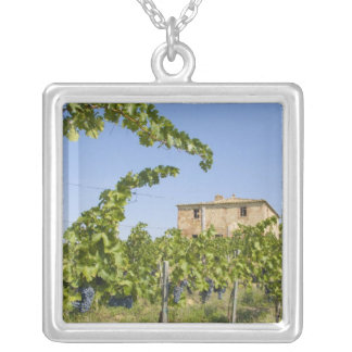 Italy, Tuscany, Montepulciano. Wine grapes ready Square Pendant Necklace