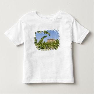 Italy, Tuscany, Montepulciano. Wine grapes ready Toddler T-Shirt