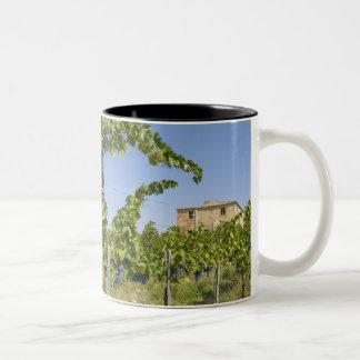 Italy, Tuscany, Montepulciano. Wine grapes ready Two-Tone Coffee Mug