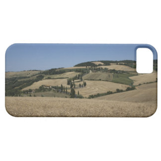 Italy. Tuscany. Montichiello Barely There iPhone 5 Case