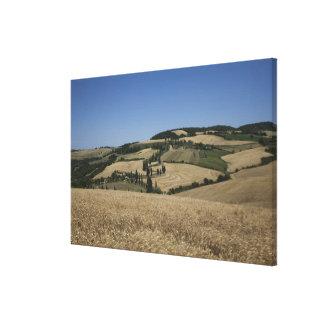 Italy. Tuscany. Montichiello Canvas Print