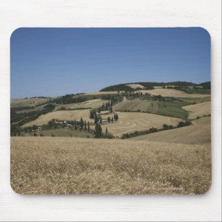 Italy. Tuscany. Montichiello Mouse Mat