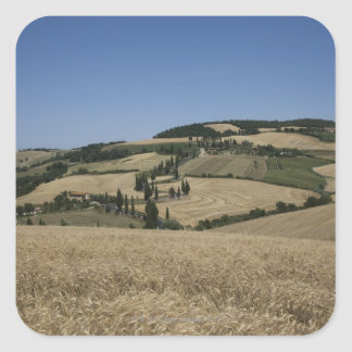 Italy. Tuscany. Montichiello Square Sticker