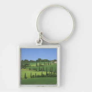 Italy, Tuscany, Multepulciano. Cypress trees Key Ring
